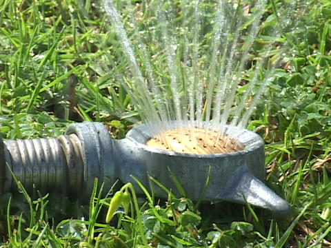 A sprinkler waters the grass Stock Video Footage