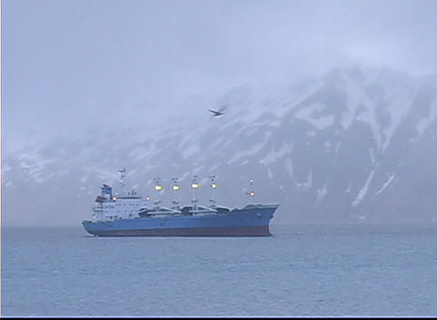 A bird flies above a large vessel on a calm sea Stock Video Footage