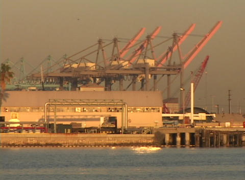 Medium shot of large cranes standing in a container port Stock Video Footage