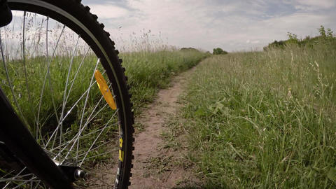 Bicycle riding in a meadow. Wheel in motion close up. 4k POV video ภาพวิดีโอ