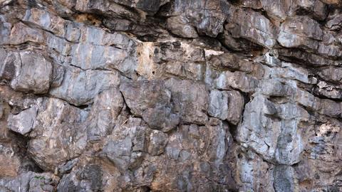 Strata of Sedimentary Rock near the Sea. Video 4k Footage