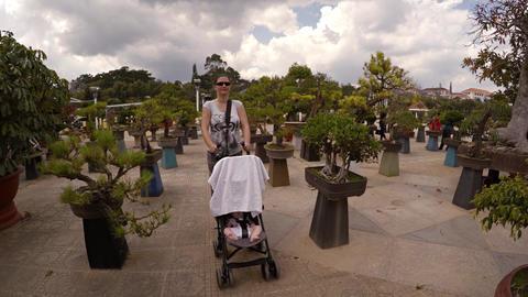 Mother pushes stroller between elaborate bonsai trees at Flower Garden Park Footage