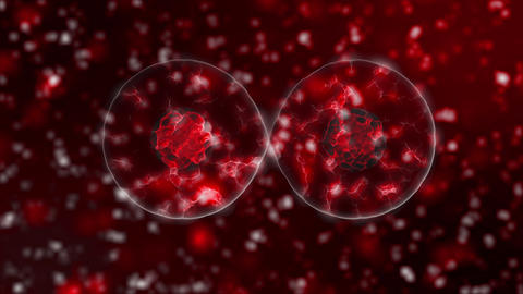 3D visualization of the virus. Pathogens, information on the new 2019-nCoV Live Action