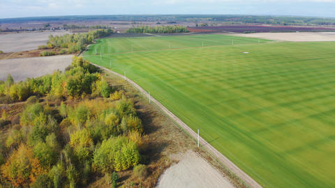 Fly over roll lawn farm. Growing lawn field for sale. Aerial footage Live Action