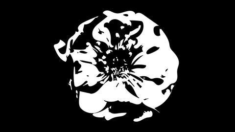 椿の花 開花アニメーション シルエット CG動画