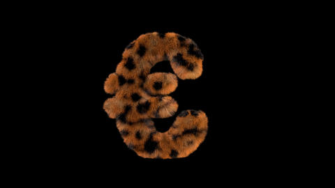 3D animated furry hairy zoo leopard text typeface with alpha channel Euro L Animation