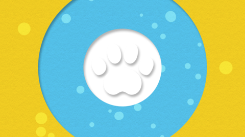 Paws transition light blue 01 Animation