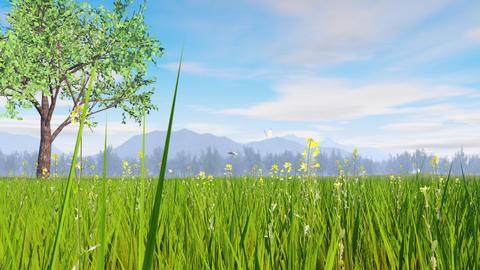 Spring landscape image, green tree Animation
