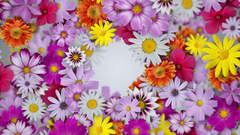 Flowers spread to form a wreath, white background CG動画