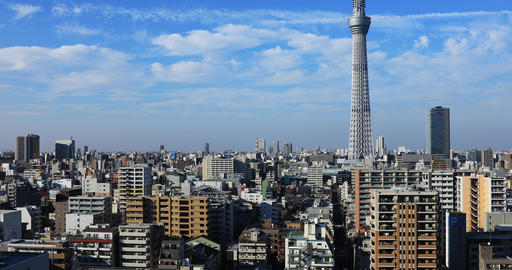 Tokyo sky tree at the urban city in Tokyo wide shot Live Action