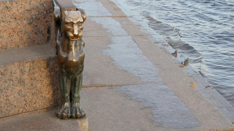 Mythological winged lion Live Action