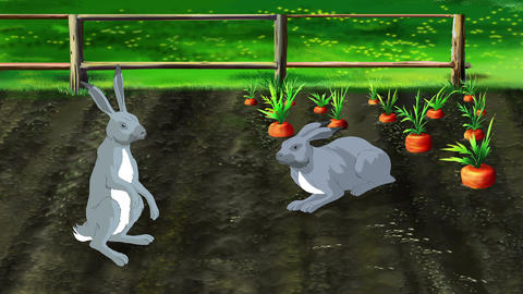 Hares on Carrot Garden Footage