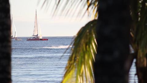 Sailboat at horizon in caribbean sea at sunset 4 Live Action