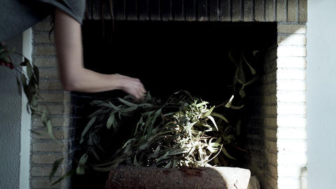 Girl puts eucalyptus branches in the fireplace. The warmth and comfort of home Live Action