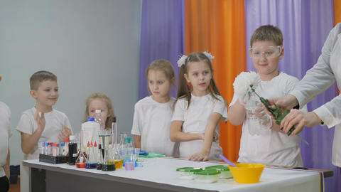 Chemical experiments for children. Fun experiments for children. A woman Live Action