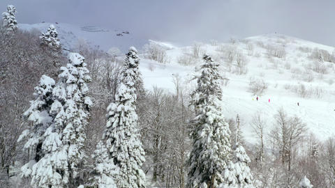 Aerial view snowy trees in winter mountain. Drone view snowboarder riding on snowboard on snowy Live Action
