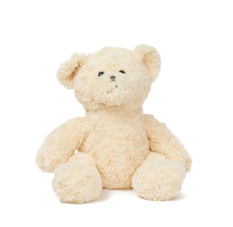 big curly beige teddy bear sits on a white isolated background Fotografía