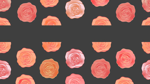 Wonderful roses video background. Moving pattern. Web banner Animation