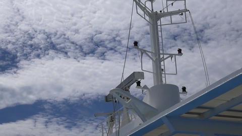 Vessel's Radar Live Action