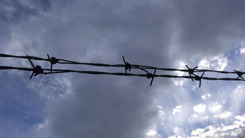 Barbed Wire against the Cloudy Sky (2) Live Action