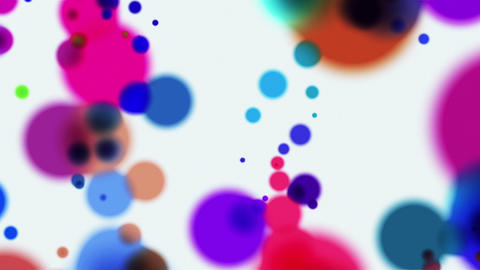 Colored Circles Flying On White Abstract Background Animation