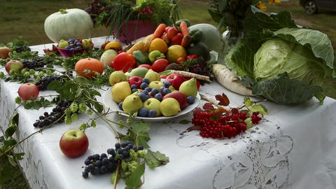 Vegetables are on the table Footage