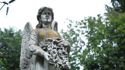 Ancient statue of guardian angel at old cemetery Footage