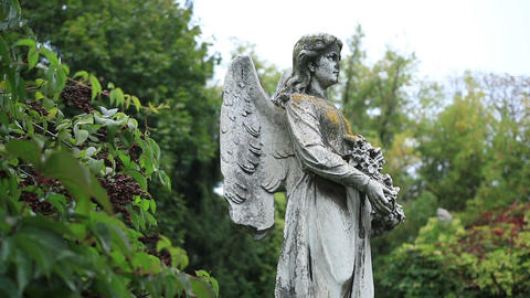 Sculpture of stone angel praying at the cemetery Footage