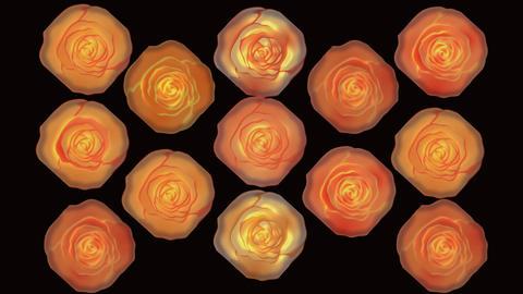 Wonderful burning roses video background. Rotating roses Animation