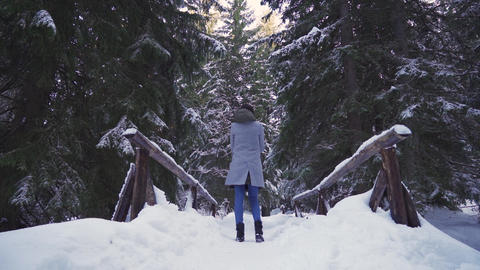 Young woman watching beautiful snow covered evergreen forest ライブ動画