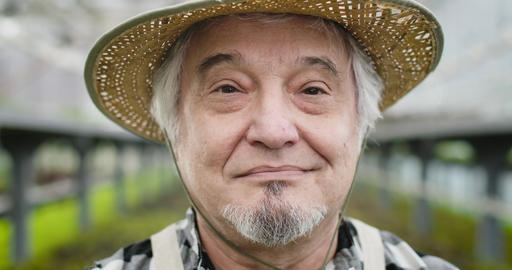 Close-up face of joyful mature Caucasian man with brown eyes looking at camera Live Action