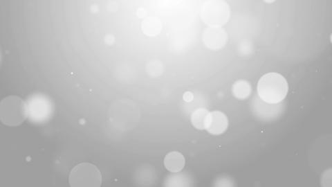 Particles white bright glitter bokeh dust abstract background loop 01 Animation