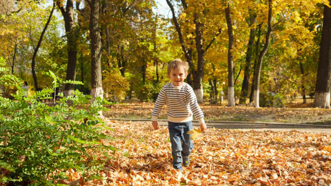 4k video of cheerful smiling 4 years old boy running in autumn park Live Action