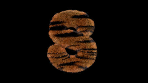 3D animated furry hairy zoo Tiger text typeface with alpha channel S Animation
