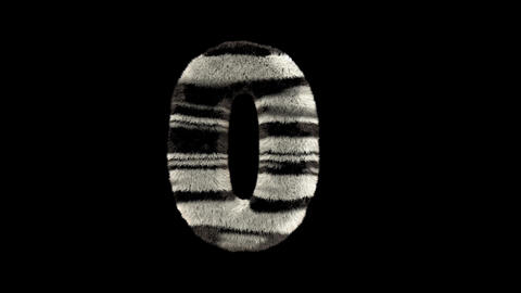 3D animated furry hairy zoo zebra text typeface with alpha channel 0 Animation