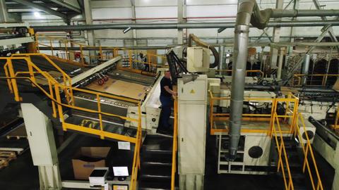 conveyor bends and transports cardboard sheets at plant Acción en vivo
