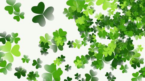 Motion green shamrocks, Saint Patrick Day animation background Animation