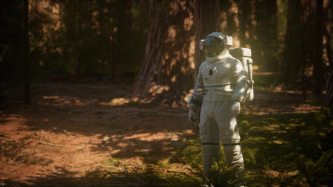 lonely Astronaut in dark forest GIF