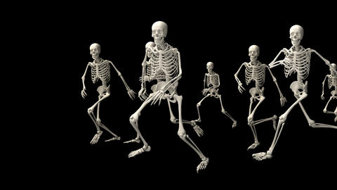 Group of running skeletons Animation