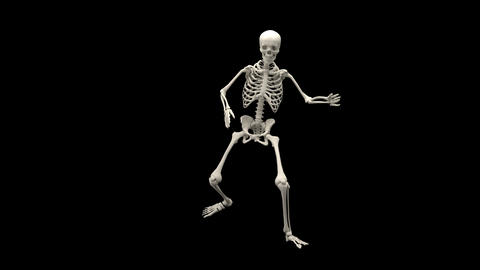 Terrible walking skeleton Animation