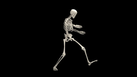 Horrible skeleton Animation