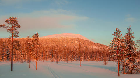 Evening in Lapland. Time Lapse UHD Footage