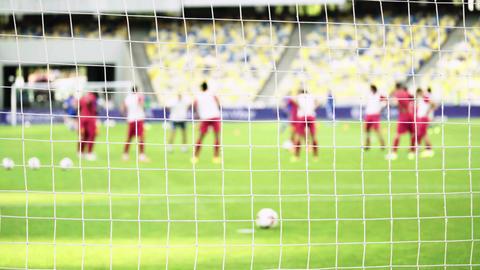 Training football soccer players at the stadium. Warm up. Olimpiyskiy. Kyiv Live Action