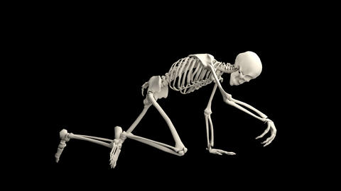Close-up of a creeping skeleton Animation
