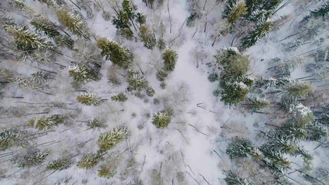 SALE! Winter And Snow Drone Footage