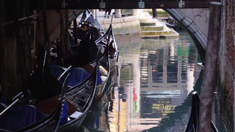Venice reflection of gondolas and bridge in water on canal Live Action