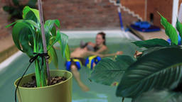 Fresh green plants in aqua therapy center Live Action