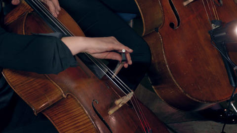 1080p Cellist Playing / Violoncellist Playing / Orchestra Concert Live Action