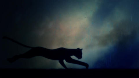 A Black Panther Runs in Loop Under a Lightning Storm at Night Footage
