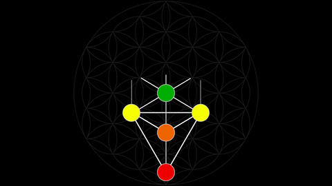 Kabbalah Color Spectrum of the Tree of Life on a Flower of Life Background Live Action